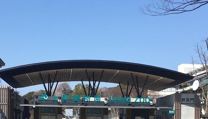 博物館や美術館ではないですが、上野恩賜公園に来たらここもチェックしたいですね!公園入り口からまっすぐ奥に進むと「上野動物園」があります。最近ではパンダのシャンシャンが話題に♪