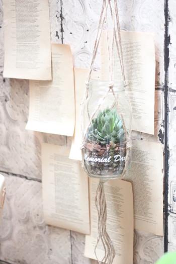 グリーンをすっぽりと覆ってしまう深さのあるガラス瓶もプラントハンガーに入れると、愛らしいハンギングプランツに。