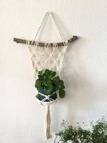 こちらは流木にネット状に編んだ紐を合わせたお洒落なプラントハンガーです。アイデア次第で、いろいろなかたちのプラントハンガーが楽しめます。