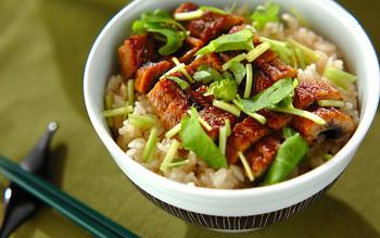 蒲焼きのタレとしょうがで炊いたご飯にうなぎを乗せていただくのも◎お米に味がついているので、うなぎのタレはできるだけ少なめに魚本来の味を楽しむのもいいですね。