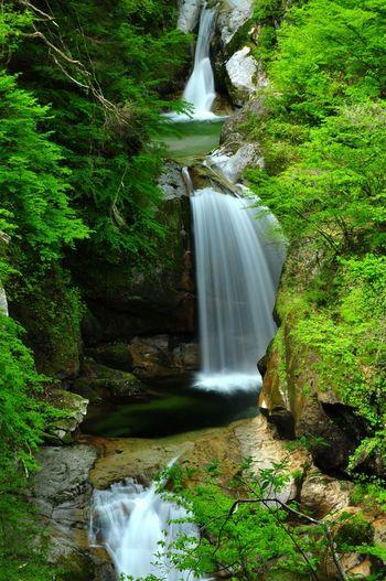 駐車場から2時間ほど歩いた先にある神蛇滝は、3段になって流れ落ちる姿が美しいと評判。秘境の中の滝はエメラルドグリーンの水を青々とたたえています。