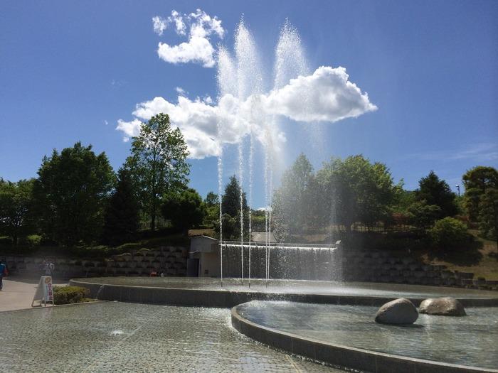 「笛吹川フルーツ公園」は、甲府から国道140号線経由で約30分走ったところにある大きな公園です。古くから山梨の特産として栽培されてきたとブルーベリーやラズベリーをはじめ、梅や桃の花、銀杏や柚子までさまざまな果樹が広い敷地に植えられています。噴水を眺めながら、ゆっくり散策してみませんか?