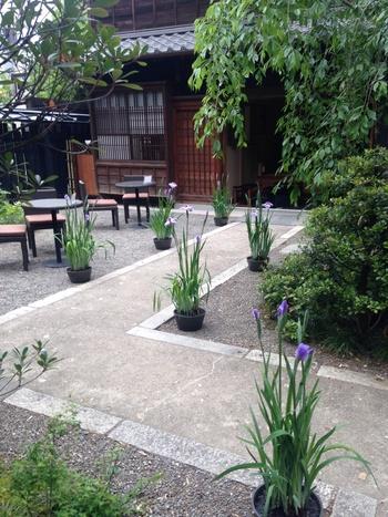 手入れの行き届いたお庭には、テラス席もあります。神田明神と一緒にぜひ寄ってみてくださいね。