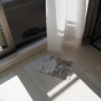 ワイパーシートで代用することも可能。少し濡らして、先程と同じように網戸の両側から挟み込むように拭いていけば…こんなに汚れが落ちていくんです!