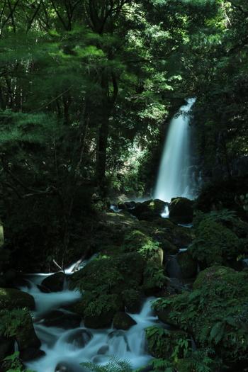 入口で清掃協力金を支払い、少し歩くと目の前に現われる、白糸の滝。滝の近くまで行くことができ、パワースポットとしても知られています。