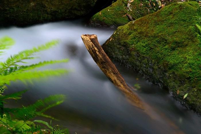 白糸の滝は熊本県平成の名水百選にも選ばれているほど、流れる水もキレイ。マイナスイオンを浴びに訪れてみませんか?