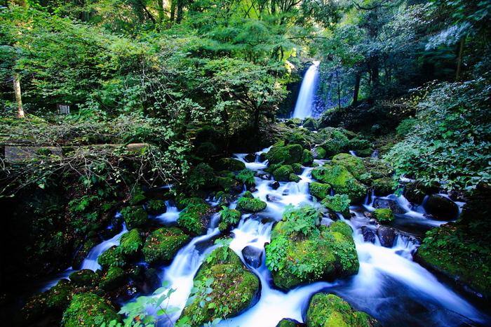 """西原村に古くからある「寄姫伝説」が伝わる""""白糸の滝""""。西原村の河原小学校近くに流れる、滝川の上流にあります。20mの高さから流れ落ちる滝は、美しく伸びる白い糸のよう。"""
