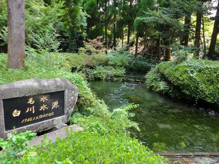 """白川吉見神社の中にある""""白川水源""""。水の透明度が高く、その美しさは日本名水百選に選ばれているほど。訪れた人は、水を自由に持ち帰ることもできます。"""