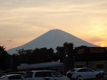 富士五胡や箱根に向かう途中に立ち寄っておきたい足柄サービスエリア。美しい富士山が眺められるビュースポットとしても人気です。 緑に囲まれたドッグランやピクニックスペースもあります。青空の下での家族団らんは気持ちいいですよ!