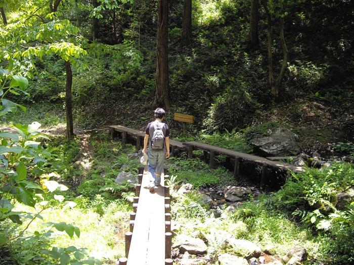 また、まわりにはきれいな小川も流れています。公園内は遊歩道が整備されているので、森林浴して、自然からエネルギーをたっぷりチャージしてくださいね♪
