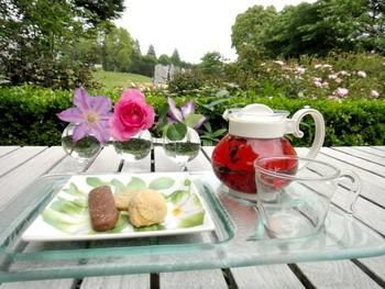 こちらは、ハーブティーとクッキーのセット。風景だけでなくハーブティーの色も鮮やかで、話に花が咲きますね。