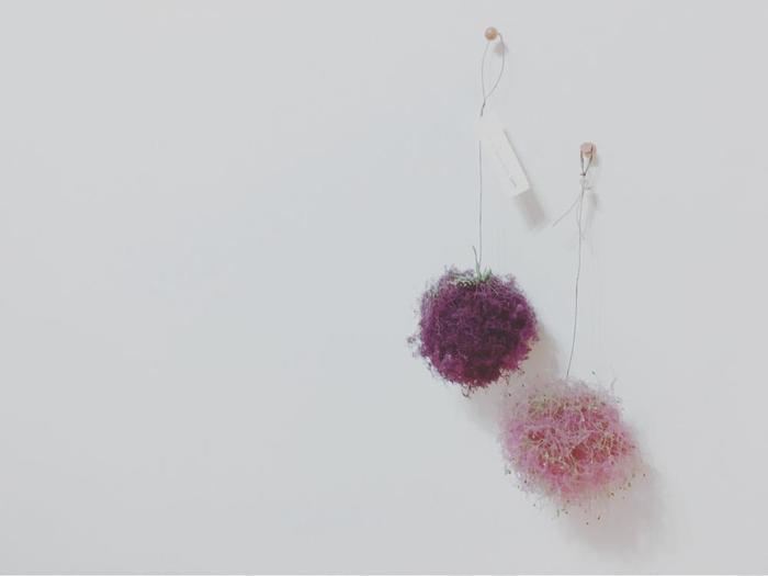 花穂を丸くまとめたふわふわボール。サイズ違いや色違いをたくさん並べたくなります。