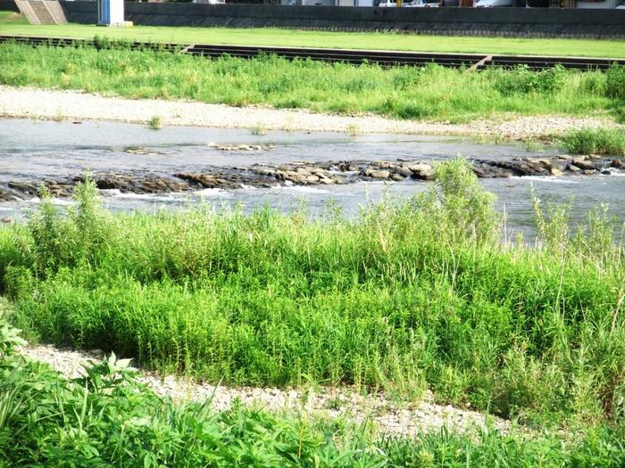 金沢市を流れる犀川は、流れの豪快さから「男川」と呼ばれることも。「抒情小曲集」「あにいもうと」「密のあはれ」などの詩集や小説で知られる金沢三文豪の一人、室生犀星が愛した川としても知られています。  東京から金沢までは、北陸新幹線で約2時間半。飛行機なら羽田空港から約1時間で到着可能。犀川に吹く心地いい風と歴史を感じる街並みを眺めながら、観光スポットやカフェ&お店巡りにでかけましょう♪