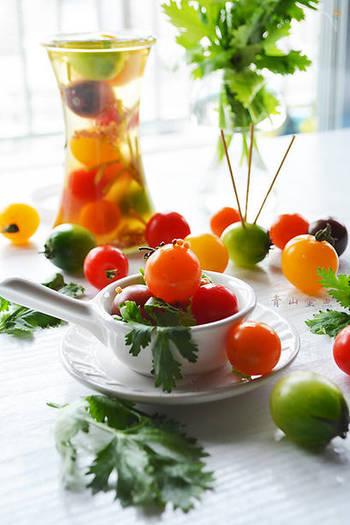 最近はスーパーマーケットでも、緑や黄色、オレンジなどのカラフルなミニトマトが手に入るようになりました。カラフルなミニトマトのピクルスは、それだけで食卓が一気に華やかになります。こちらのピクルスは、さらにパクチーの香りがプラスされ、大人女子に喜ばれそうな、エスニックな仕上がりに。