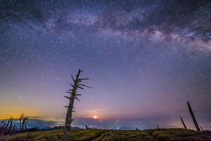「日本100名山」「日本100景」「日本の秘境100選」などに選出されている大台ヶ原。近畿地方でトップクラスの星景スポットです。立ち枯れしたトウヒが立ち並ぶ「正木ヶ原」の上に広がる星空は、幽玄的な雰囲気。鹿が姿を見せる場所でもあります。