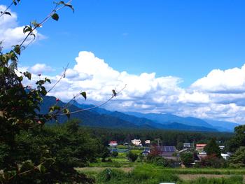 窓の外には安曇野の自然が広がっています。夏は真っ青な青と白い雲、草木の緑がキラキラしていて絵画を見ているよう。