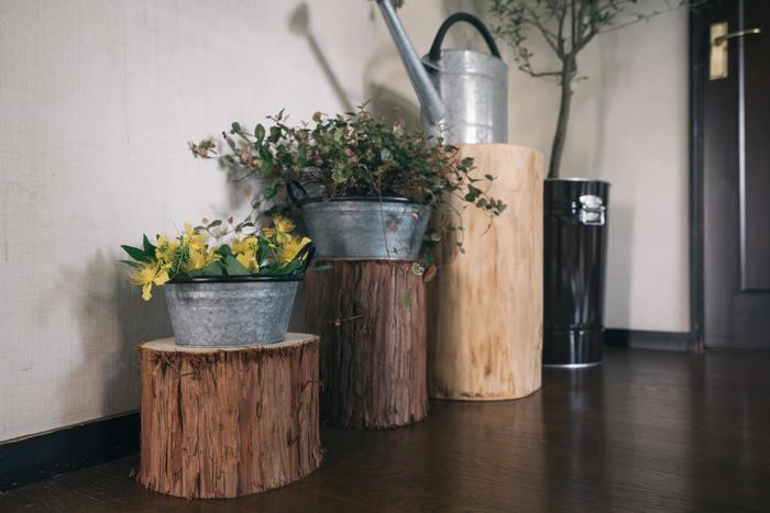 スツール代わりに丸太を活用。椅子の代わりに、ディスプレイ用にとどこに置いてもワンアクセントになり、木の香りに癒やされそう。 家の中に天然木があると、さらに自然を感じられますね。