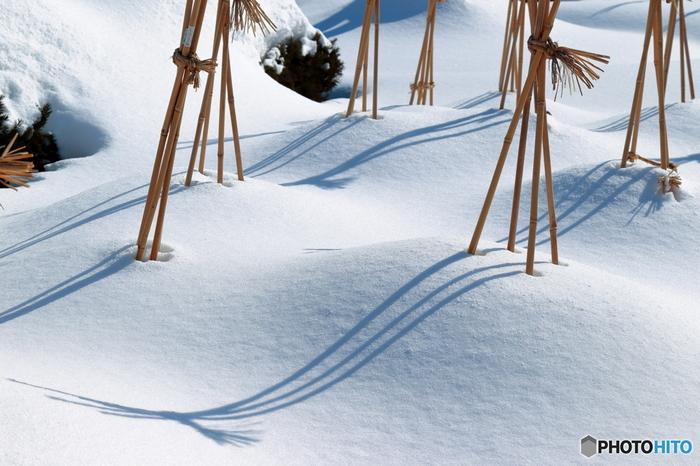 そして、札幌といえば一番に雪を想像する人も多いのではないでしょうか…。年間約600cmもの雪が降る街に、約190万人もの人々が住んでいるというのは、世界的でもとても珍しいことなんだそうです。冬は雪の街ならではの楽しみもいっぱい!雪まつりやウィンタースポーツなどを楽しむことが出来ます。 また、夏は梅雨が無く台風の影響が少ないのが特徴で、7~8月には平均気温が20℃を超えますが、湿度が低く、朝晩はとても涼しく過ごしやすいということもあり、札幌はこれからの季節にもぴったりのおすすめスポットです。