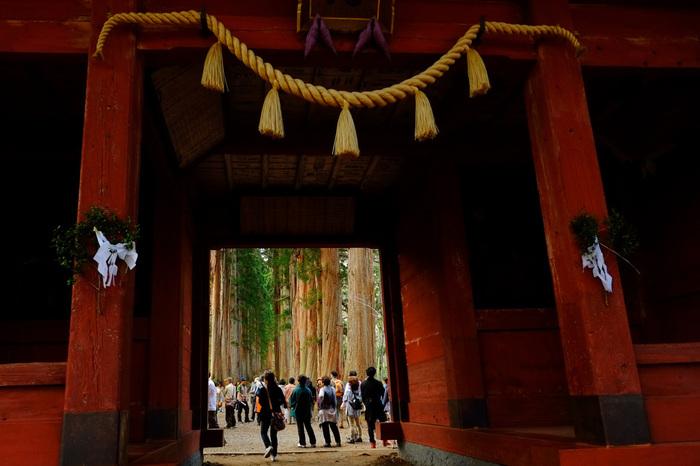 これら五社は少し離れた場所に点在しており、長野市の観光で訪れるのなら、長野駅から車で約50分の戸隠神社の奥社がおすすめ。こちらは奥社の入口から大木杉の参道を約1km歩いた先にある随神門。