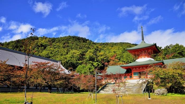 善光寺を訪れたら、本堂から約1㎞、山の中腹にある納骨堂の「雲上殿」もおすすめ。本堂と比べて人も少なく、周囲にはのどかな光景が広がっています。