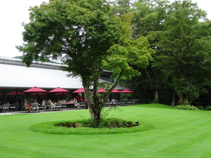 「箱根ラリック美術館」は、ラリックの展示作品も然ることながら、木立と洋芝が美しい庭園も魅力。  庭を望む「Cafe&Restaurant LYS」は、食事を楽しむためにわざわざ訪れる観光客も多いカフェレストランです。豊かな緑と高原の清々しさを楽しみながら、見目麗しいカジュアルフレンチやスウィーツが味わえます。【8月下旬のLYSのテラス席】