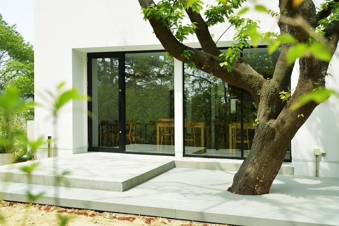 泉区の住宅街に佇む、庭のあるカフェ「みどり」。太陽がいっぱい差し込む洗練された空間の中で、身体に優しいランチやデザートをいただくことができます。