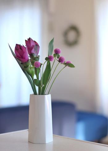 生姜の仲間の「クルクマ」と「センニチコウ」は、夏でも持ちが良い花の代表格。センニチコウは白、紫、ピンクといった定番カラーの他、最近は赤い物も出回るようになりました。