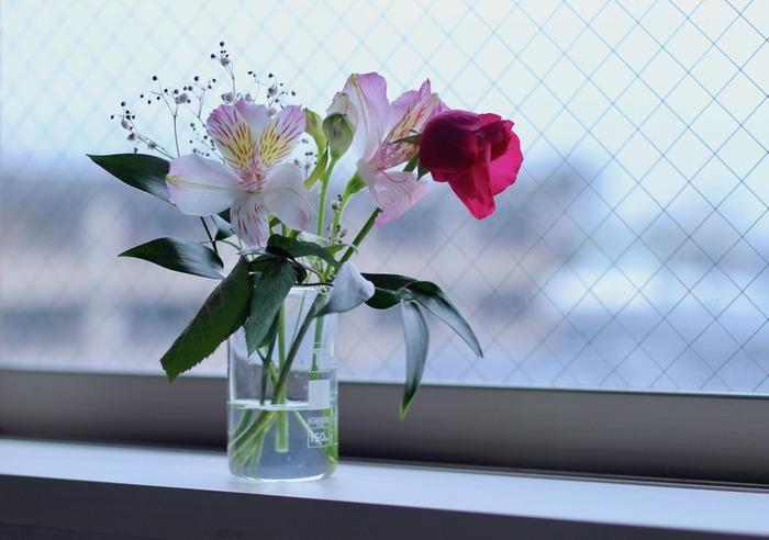 小さな百合のような「アルストロメリア」は、花持ちが良いのでアレンジメントや花束にもよく使われます。四季咲きの物は夏も咲き続けるので、入手もしやすくおすすめです。