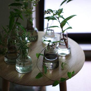 「雑草」と呼ばれている物でも、かわいらしい花が付いている物があります。飾り方を工夫すれば、丈夫なので長く楽しむ事ができます。