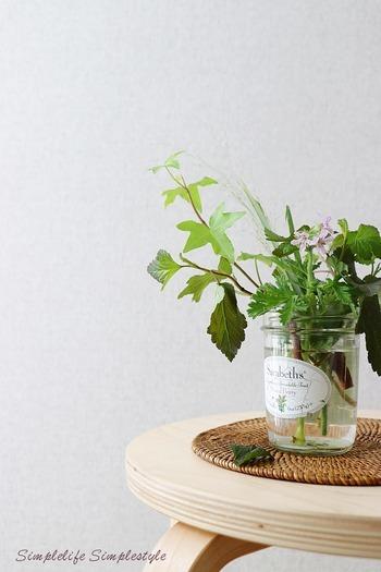 夏は花が痛みやすい時期ですが、植物の生命力があふれる季節でもあります。お気に入りの空き瓶に野花を一輪挿すだけでも雰囲気が出ますので、部屋の一隅に季節を飾るつもりでどうぞ。鮮やかな緑が目を涼ませてくれますよ。