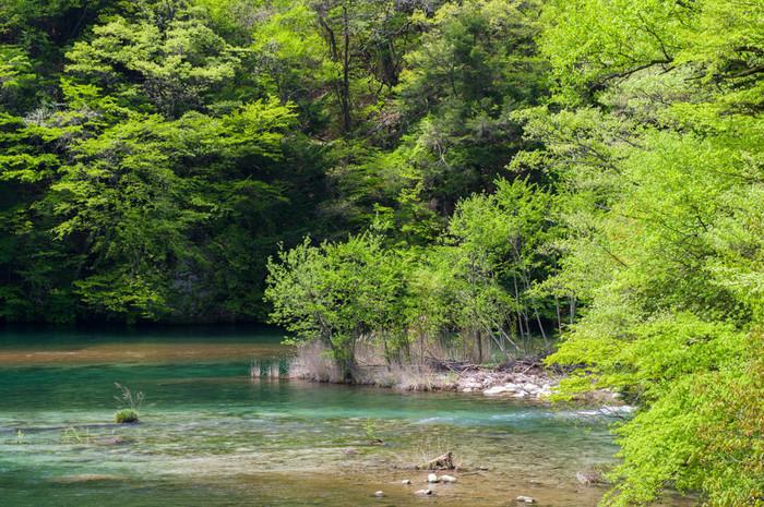 山間にひっそりと佇む温泉郷。約250年前からあったとされていますが、一度埋もれてしまい、1973年に再発見され「昼神温泉(ひるがみおんせん)」として生まれ変わりました。昼神温泉のアルカリ性単純硫黄泉のお湯は、肌の古い角質を取り滑らかなスベスベお肌にしてくれるので、「美人の湯」として親しまれています。