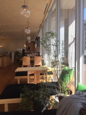 大きなガラスで外と区切られた店内には、太陽の光が窓いっぱいに差し込みます。お天気の良い日には、この一面の窓の外に、旭川を囲む山々がくっきりと浮かび上がります。