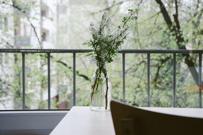 高さはそれほどないけれど、容量は少しあるタイプのビン。これには収まりの良い長さにカットしたお花とグリーンを束ねて。窓辺に置いて外の景色と同化するようなアレンジも◎。そうすることで、家の中にいながらも外の気配を一続きで感じられる爽やかな演出ができます。