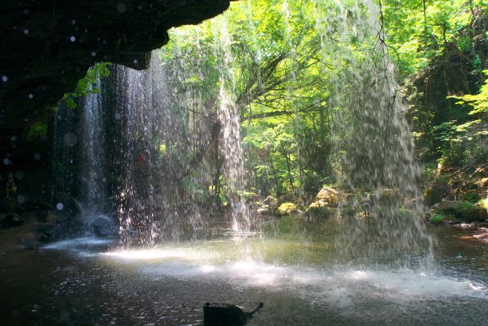 この滝のもう一つの魅力は、裏側に回れること。ダイナミックな水のカーテンから、マイナスイオンをたっぷりと浴びましょう!