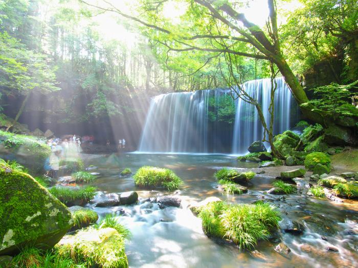 熊本県阿蘇郡小国町にある「鍋ヶ滝」は、CMで登場したことでも有名な九州を代表する滝のひとつです。約9万年前の巨大噴火によってできたと言われている滝で、勢いよく水が流れ落ちる様子と青々とした緑とのコントラストは、まるで絵画のような感動的な美しさです。