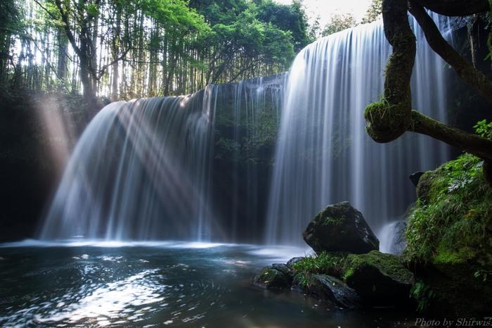 滝壺へ流れ落ちる様子は、自然が生み出す水のカーテンのよう。迫力はありますが、落差10m・幅約20mという幅の広さも相まって、やわらかな癒しの雰囲気が漂っています。