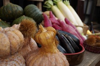 ベランダ菜園で在来種を育ててみると、見た目や味の個性の豊かさに驚くことでしょう。また、自分で種をとり、翌年蒔くことができるのも魅力の一つです。長年伝えられてきた在来種の野菜には、栄養価の高さや野菜の旨味がつまっています。