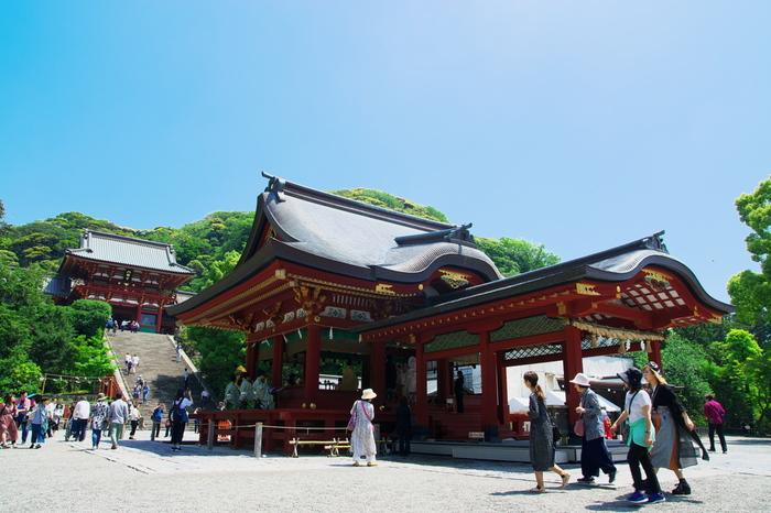 鎌倉の中心に鎮座する「鶴岡八幡宮」は、鎌倉駅から歩いて10分程度、前に紹介した浄智寺からは歩いて20分ほどでアクセスできます。鶴岡八幡宮の参拝時間は朝早くから夜まで可能なので、時間を気にせずに訪れることができるのも魅力のひとつ。また、1828年に江戸幕府により造られた漆の朱が印象的な本宮もとても見事です。