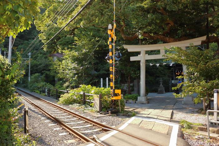 長谷駅から歩いて3分程度でアクセスできる「御霊神社(ごりょうじんじゃ)」。長谷寺からも歩いて5分程度で行くことができますよ。長谷寺同様、アジサイの名所としても知られており、境内すぐそばを走る江ノ電との共演も見事です。ここならではの風景が見られるので、ぜひ素敵な1枚を写真に収めてくださいね。