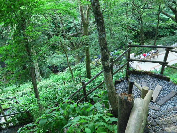 至極のガラス作品に目を細め、豊かな自然の中で欧州の雰囲気にゆったりと浸ることが、この美術館ならではの過ごし方です。【「箱根ガラスの森美術館」敷地内の遊歩道。階段の下には、箱根の清流・早川が流れている。(8月中旬撮影)】