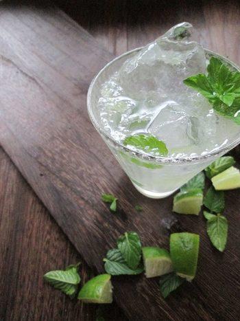 ラム酒をベースにしたカクテルのモヒートを、ミントとライムの爽快感あふれる組み合わせでモクテルにアレンジしたレシピ。塩も入っているのでアウトドアパーティーの熱中症対策にもおすすめです。