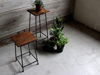 植物を床とスツールの両方に置くと、動きが出きて、空間が広く感じられます。高低差をつけるときは、下側に大きめのグリーンを配置してあげると落ち着きます。