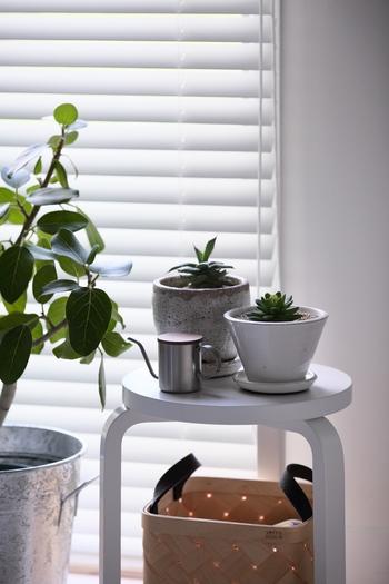 植物を置いたスツールを窓辺に置くのは、植物にとってもっとも嬉しい定位置です。お水をあげるじょうろもカワイイので、インテリアの一部として機能していますね。