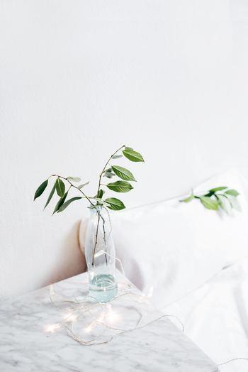 スリムなビンに葉を1~2本。さりげない緑が爽やかな癒しをくれます。こうしたディスプレイはお手洗いやベッドサイドなどの清潔に保ちたい場所によく合います。写真のようにフェアリーライトなど優しい照明を添えてもいいですね。