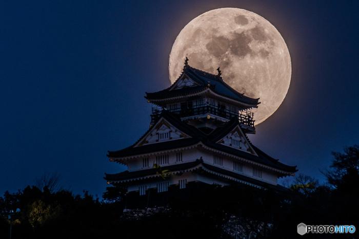 夜の岐阜城と月の組み合わせも、フォトジェニックだと人気があります。月明かりを受けてそびえ立つ岐阜城の勇姿はまるで戦国時代に戻ったかのよう。