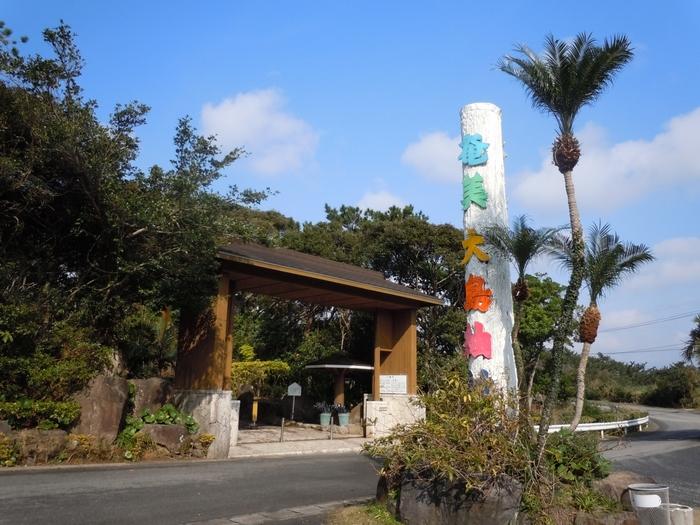 奄美大島紬とは、着物の女王とも呼ばれる絹織物。そんな奄美大島紬を奄美大島紬の製造現場の見学や様々な体験ができる施設が「大島紬村」です。奄美空港から車やバスを利用すれば20分程度でアクセスできます。「亜熱帯植物庭園」の中にあるこの施設、ご自身のペースで見学もできますが、タイミングが合えばガイドさんと一緒に施設をまわれます。せっかくですので、ガイドさんの説明を聞いて奄美大島紬について学びたいですね。