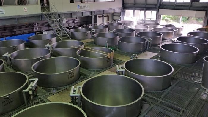 奄美大島産の黒糖を使用している奄美黒糖焼酎を製造している「奄美大島酒造」の工場が龍郷町にあります。黒糖焼酎専用に作られた黒糖を100%使用して製造しているのは、この奄美大島酒造だけ!その工場を見学することができるのです。なかなか見ることのない焼酎が作られている工場を、この機会に見学しちゃいましょう。