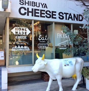 牛のオブジェがお出迎えしてくれるこちら、渋谷チーズスタンドは「街に出来たてのチーズを」をコンセプトに、保存料を使わない手作りフレッシュチーズを提供しているお店。これまで輸入ものがほとんどだったブッラータを、日本国内の自家工房で製造販売することに日本で初めて成功したという先駆者でもあります。