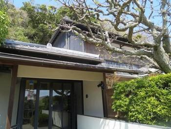居宅の一部やアトリエ、丹精されたお庭が見学できます。