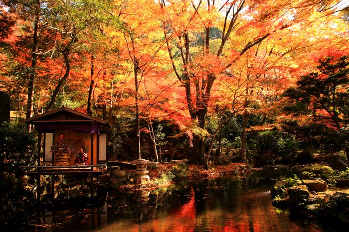池に設えた舞台にも菊人形が飾られ、周囲の紅葉と見事に調和し、幽玄な雰囲気を醸し出しています。